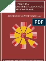Relatorio- gestrado-UFMG-condiçao docente brasil