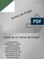 Armas de Fuego[1].pdf