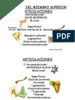 Anatoma Del Miembro Superior