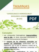 Vitaminas Exp 2