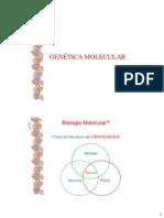 1_Introdução ao DNA
