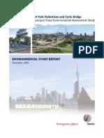 Environmental Study Report - Fort York Pedestrian & Cycle Bridge