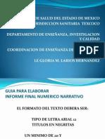 Guia Para Elaborar Informe