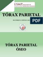 Torax Parietal