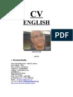 Cv Allal 2013 English