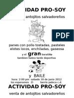 Actividad Pro-soy 2012