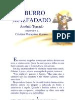 05.06 - O Burro Malfadado