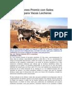 Formulaciones Premix con Sales Aniónicas para Vacas Lecheras