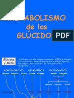 Tema 9 Glucolisis y Fermentaciones 1217553680765207 8