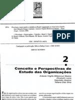 Texto 03 PTO - Conceitos e Perspectivas de Estudo das Organizações