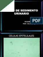Atlas Sedimento Urinario