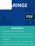 Laringe- Eq. 6 -2hm2