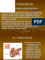 8164127 Pancreatitis Ppt[1]