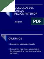 Anatomia 26 Teorico 2012