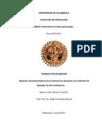TFM ASPECTOS NEUROPSICOLÓGICOS DE LA MEMORIA EN ASPERGER