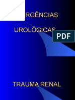 AULA 12 - Trauma genitourinário