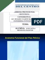 anatomia-funcional-del-piso-pelvico-copia.ppt