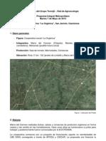 Informe 2013-05-07 La Orgánica