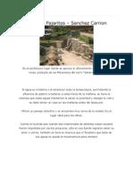 Agua de los Pajaritos - Huamachuco - Sánchez Carrión