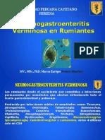 Neumogastroenteritis Verminosa Rumiantes Evd 3