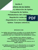 Clase1 metab. de lípidos I-Gonzales
