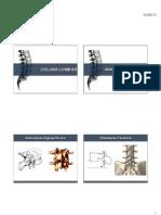 Terapia Manual Articular - Coluna Lombar