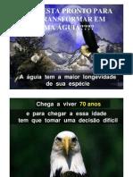 aguia.pdf
