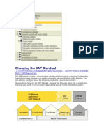 Changing the SAP Standard
