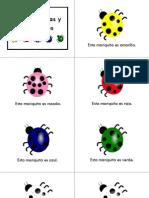 Las Mariquitas y Sus Colores