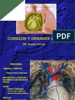 5ta Clase Torax - Corazon - Dr. Correa