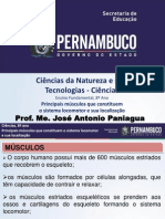 Sistema Muscular E. Fundamental . PPT