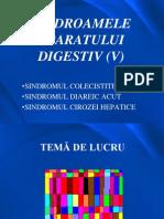 18. Sindroamele Aparatului Digestiv (v)