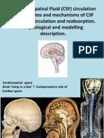 Physics of Cerebrospinal Fluid Circulation