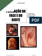 FORMAÇÃO DA FACE E DO DENTE