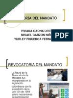 Revocatoria Del Mandato[1]
