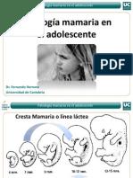 Caso Clinicos (Adolescente)-Seminario PDF Pp