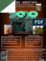 EL_VIVERO_COMUNITARIO_Y_SU_ROL_EN_LA_PRESERVACIÓN_DE_LA_BIODIVERSIDAD.ppt