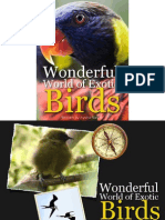 The Wonderful World of Exotic Birds