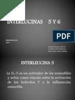 INTERLUCINAS    5 Y 6.pptx