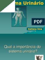 Urinario .Katy
