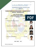 Informe Mangomarca