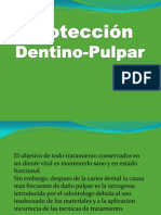protectorespulprocio-111025175950-phpapp01