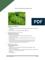 Modul Toga.pdf