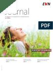EVN_Journal_2-13.pdf