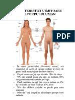 Caracteristici Uimitoare Ale Corpului Uman