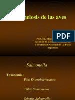 Salmonelosis de Las Aves