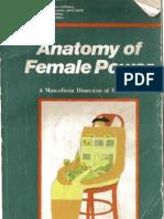 Anatomy of female power