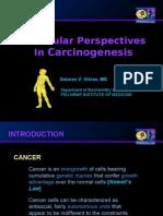 Molecular OncogenesIs