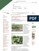 Crie Jardim_ Aula 02 - Como preparar o solo.pdf