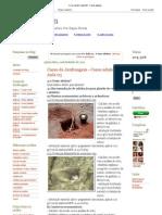 Crie Jardim_ Aula 03 - Como adubar.pdf